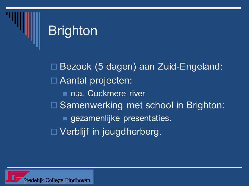  Samenwerking met school in Brighton: gezamenlijke presentaties.  Verblijf in jeugdherberg.  Bezoek (5 dagen) aan Zuid-Engeland:  Aantal projecten