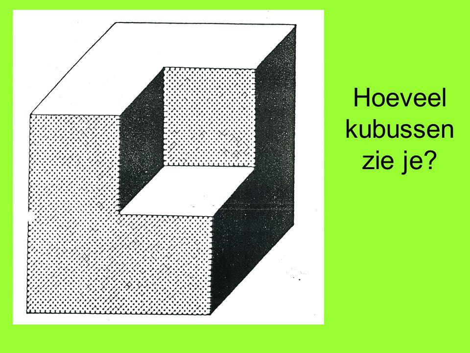 Hoeveel kubussen zie je?