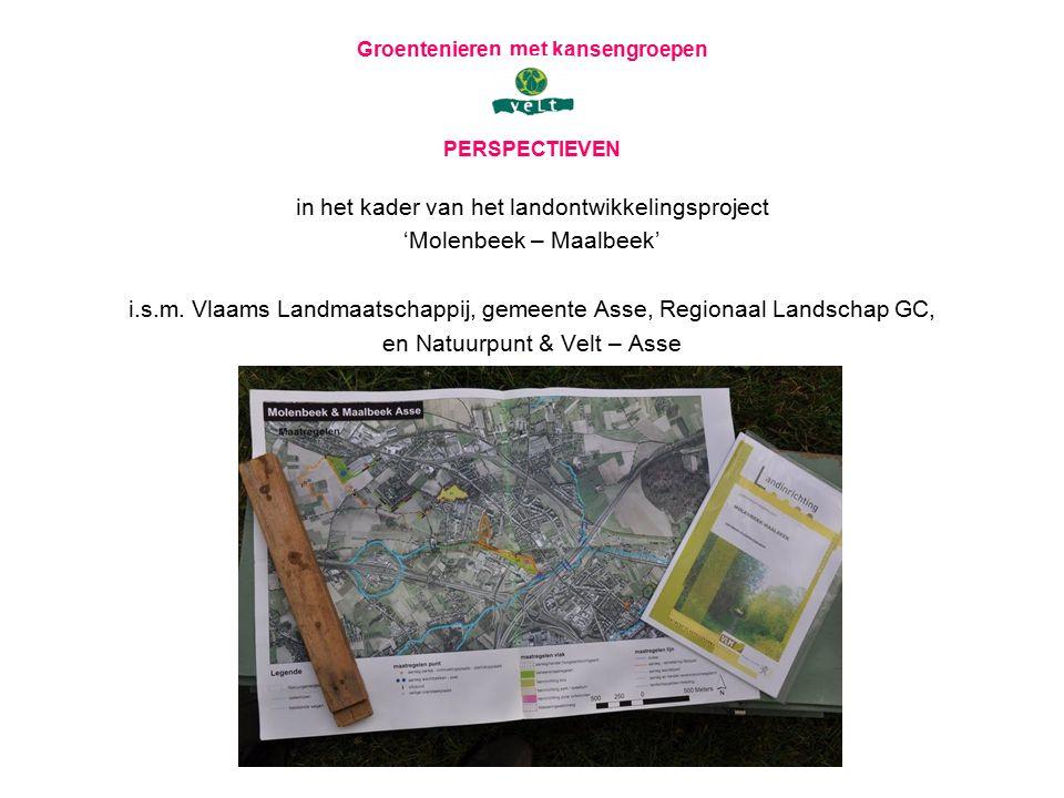 Groentenieren met kansengroepen PERSPECTIEVEN in het kader van het landontwikkelingsproject 'Molenbeek – Maalbeek' i.s.m. Vlaams Landmaatschappij, gem