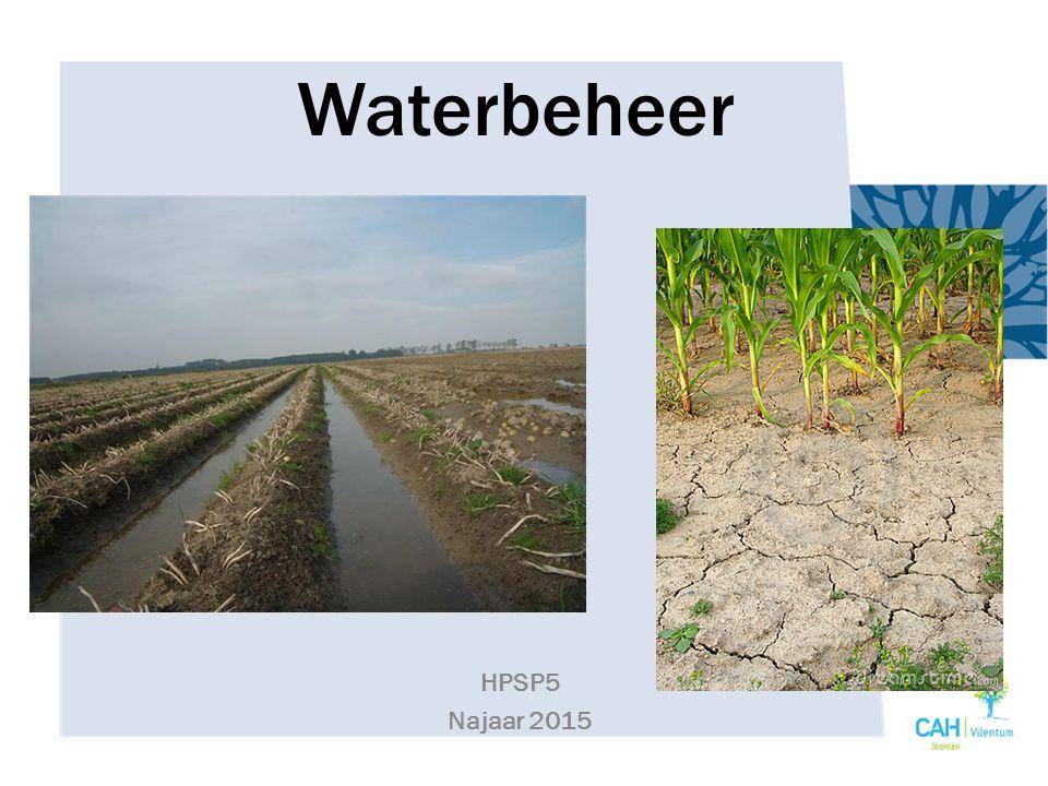 Watervoorziening en gewasproductie Belang van water voor planten (gras) – Voor de productie van koolhydraten (fotosynthese) 1 kg gras = 100 liter water 1 kg tarwe = 250 liter water 1 kg aardappelen = 500 liter water