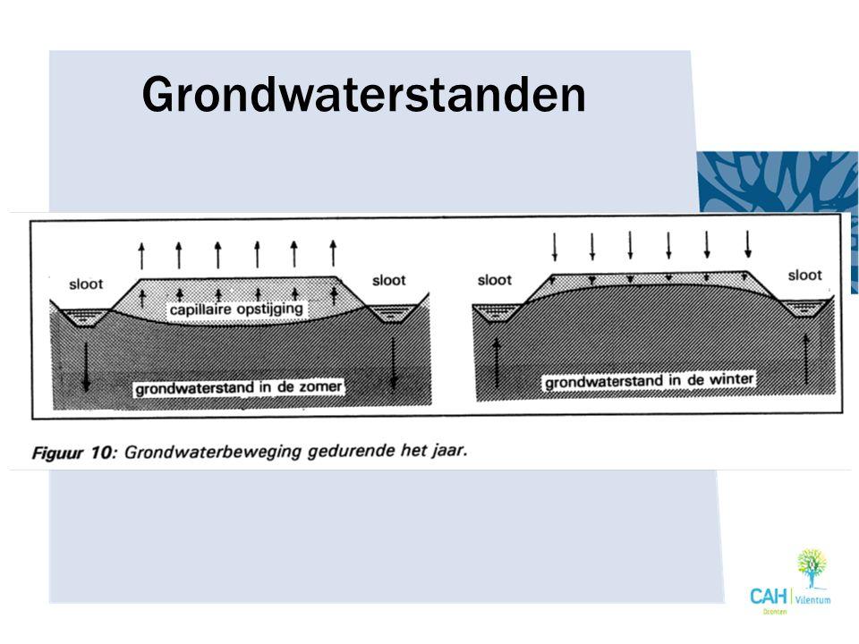 Grondwaterstanden