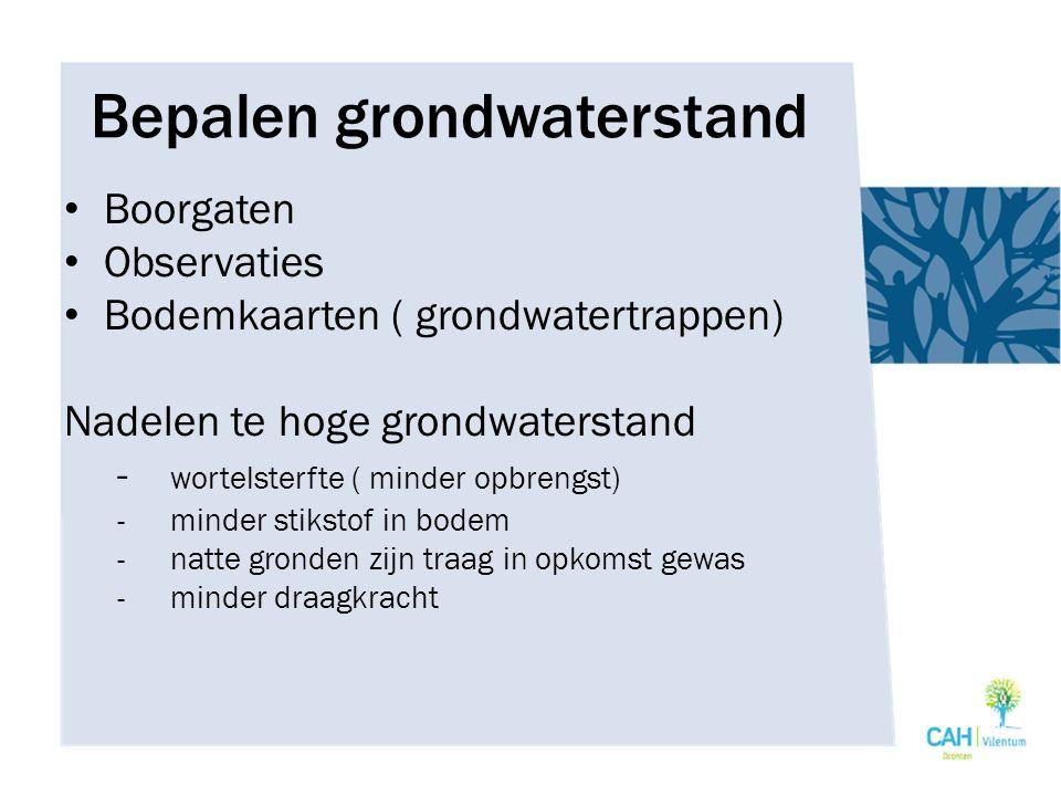 Bepalen grondwaterstand Boorgaten Observaties Bodemkaarten ( grondwatertrappen) Nadelen te hoge grondwaterstand - wortelsterfte ( minder opbrengst) -minder stikstof in bodem -natte gronden zijn traag in opkomst gewas -minder draagkracht
