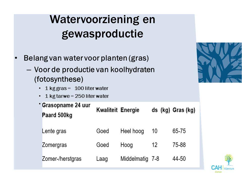 Watervoorziening en gewasproductie Belang van water – Voor transpiratie van plant Koel houden van plant – Voor transport van voedingsstoffen – Voor stevigheid van de plant – Video: waterafdruk van ons voedsel https://vimeo.com/26319648