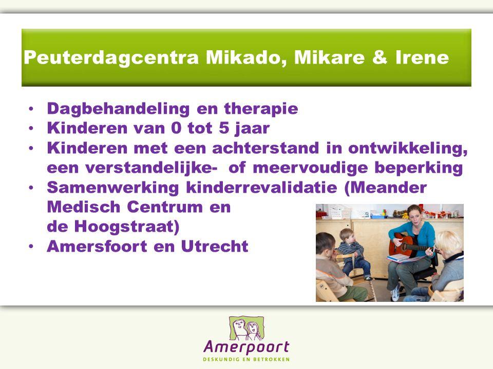 Peuterdagcentra Mikado, Mikare & Irene Dagbehandeling en therapie Kinderen van 0 tot 5 jaar Kinderen met een achterstand in ontwikkeling, een verstandelijke- of meervoudige beperking Samenwerking kinderrevalidatie (Meander Medisch Centrum en de Hoogstraat) Amersfoort en Utrecht