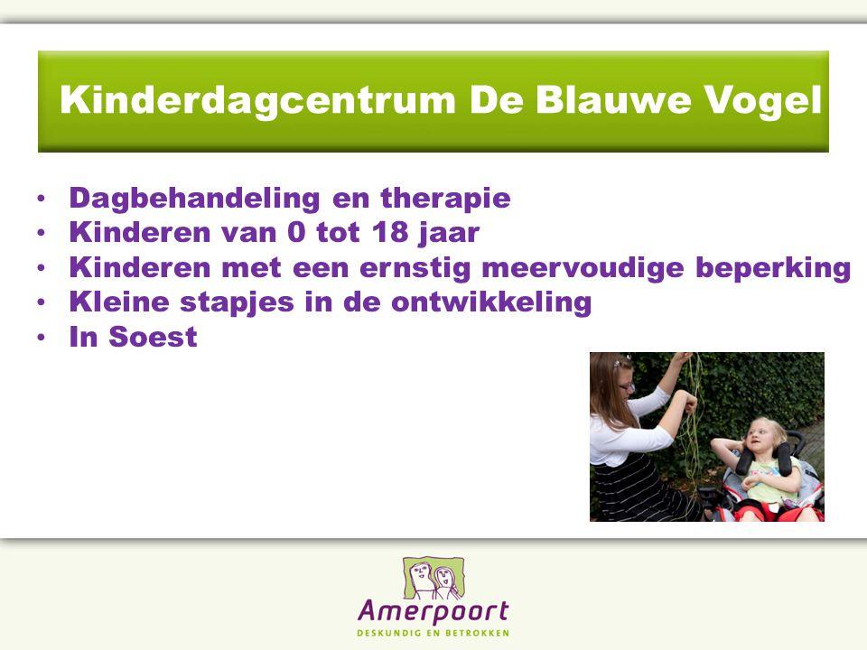Kinderdagcentrum De Blauwe Vogel Dagbehandeling en therapie Kinderen van 0 tot 18 jaar Kinderen met een ernstig meervoudige beperking Kleine stapjes in de ontwikkeling In Soest