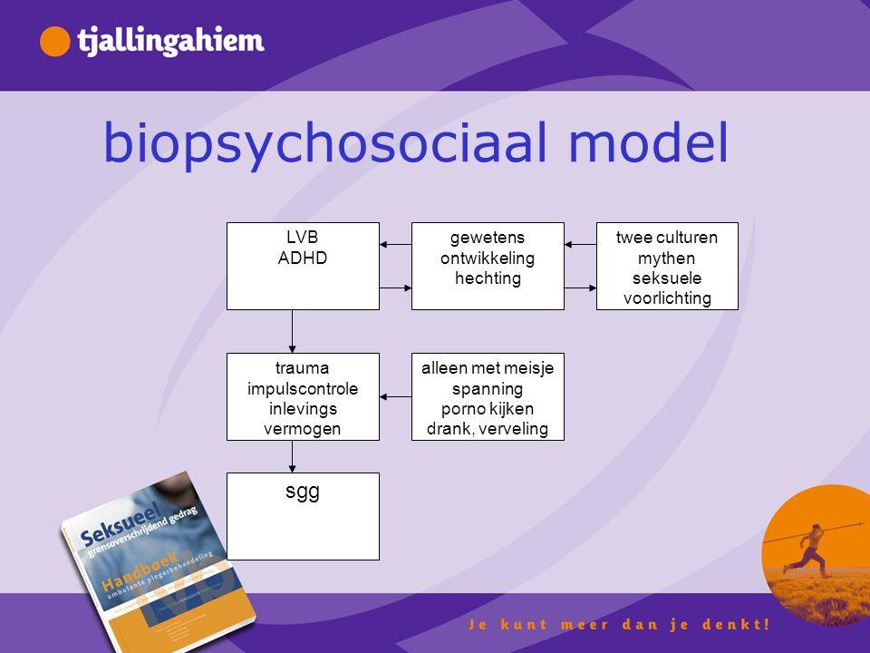 biopsychosociaal model gewetens ontwikkeling hechting twee culturen mythen seksuele voorlichting trauma impulscontrole inlevings vermogen alleen met meisje spanning porno kijken drank, verveling LVB ADHD sgg