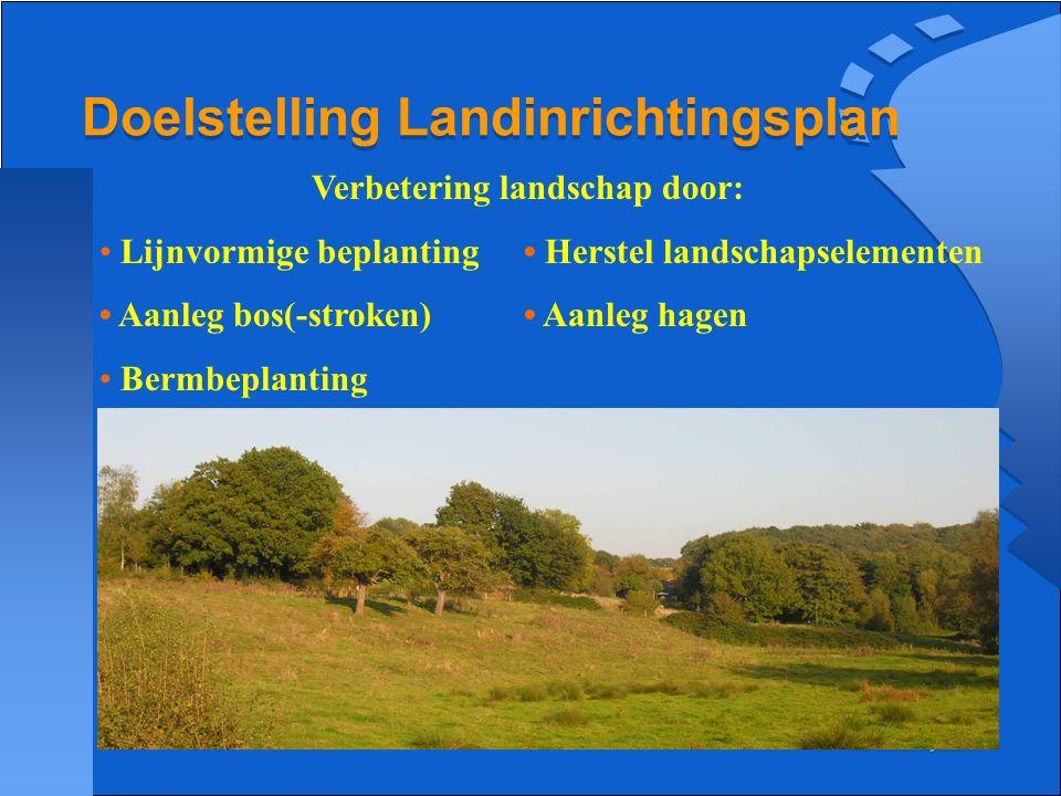 Doelstelling Landinrichtingsplan Verbetering landschap door: Lijnvormige beplanting Herstel landschapselementen Aanleg bos(-stroken) Aanleg hagen Berm