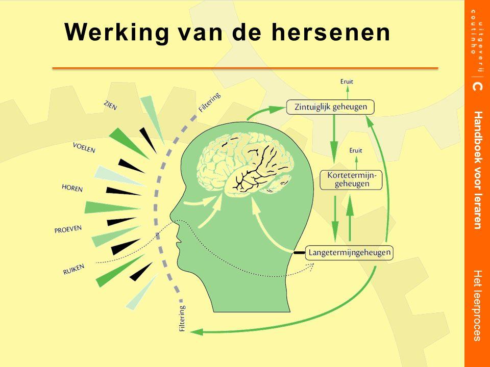 Werking van de hersenen Handboek voor leraren Het leerproces