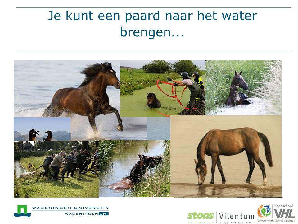 Je kunt een paard naar het water brengen...