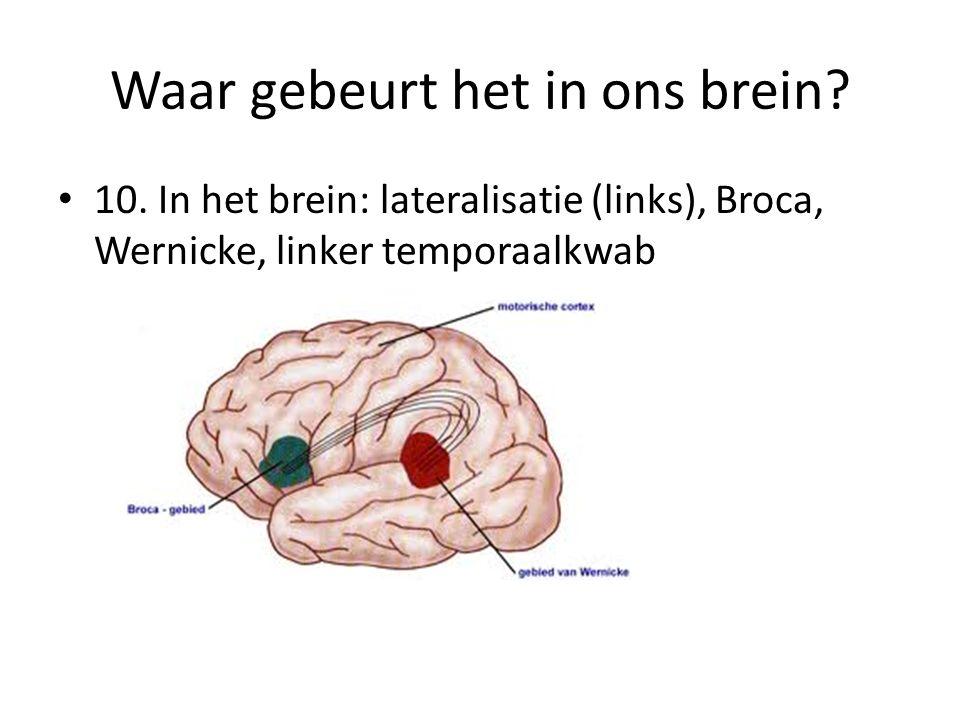 Waar gebeurt het in ons brein. 10.