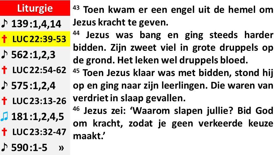 Liturgie ♪ 139:1,4,14 ✝ LUC22:39-53 ♪ 562:1,2,3 ✝ LUC22:54-62 ♪ 575:1,2,4 ✝ LUC23:13-26 ♫ 181:1,2,4,5 ✝ LUC23:32-47 ♪ 590:1-5 » 43 Toen kwam er een engel uit de hemel om Jezus kracht te geven.