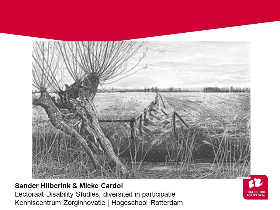 Mieke Sander Hilberink & Mieke Cardol Lectoraat Disability Studies; diversiteit in participatie Kenniscentrum Zorginnovatie | Hogeschool Rotterdam