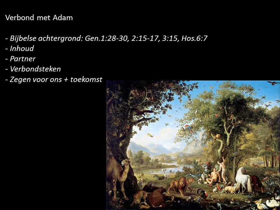 Verbond met Adam - Bijbelse achtergrond: Gen.1:28-30, 2:15-17, 3:15, Hos.6:7 - Inhoud - Partner - Verbondsteken - Zegen voor ons + toekomst