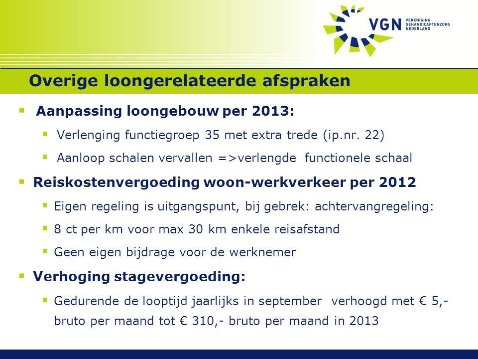 Overige loongerelateerde afspraken  Aanpassing loongebouw per 2013:  Verlenging functiegroep 35 met extra trede (ip.nr. 22)  Aanloop schalen verval