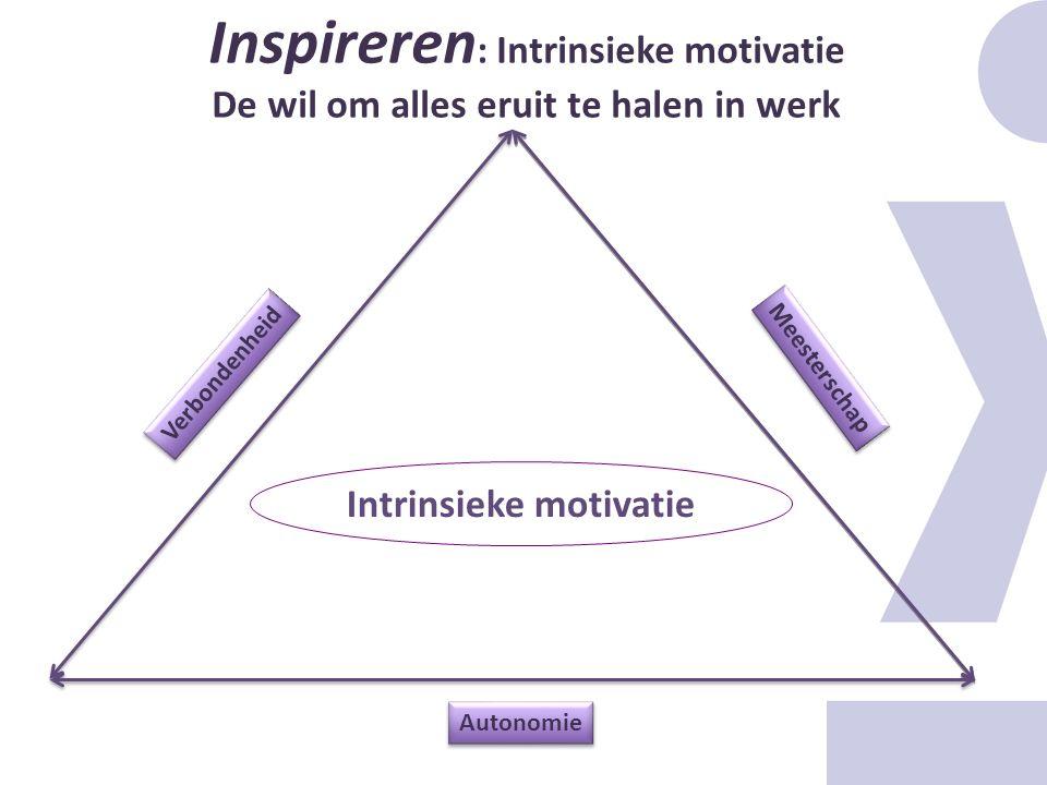 Inspireren : Intrinsieke motivatie De wil om alles eruit te halen in werk Intrinsieke motivatie Meesterschap Autonomie Verbondenheid