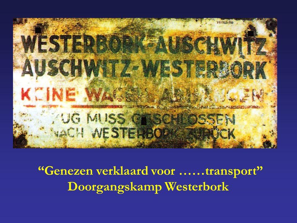 Genezen verklaard voor ……transport Doorgangskamp Westerbork