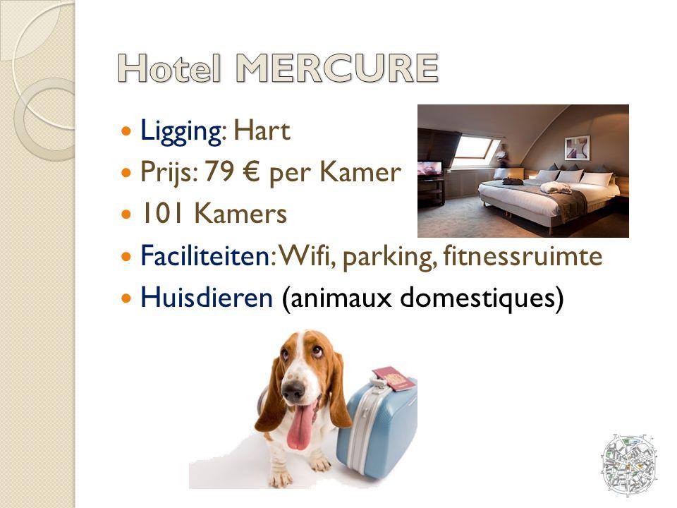 Ligging: Hart Prijs: 79 € per Kamer 101 Kamers Faciliteiten: Wifi, parking, fitnessruimte Huisdieren (animaux domestiques)