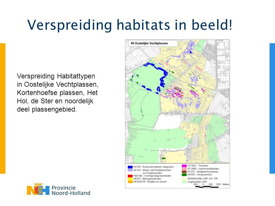 Verspreiding habitats in beeld! Verspreiding Habitattypen in Oostelijke Vechtplassen, Kortenhoefse plassen, Het Hol, de Ster en noordelijk deel plasse