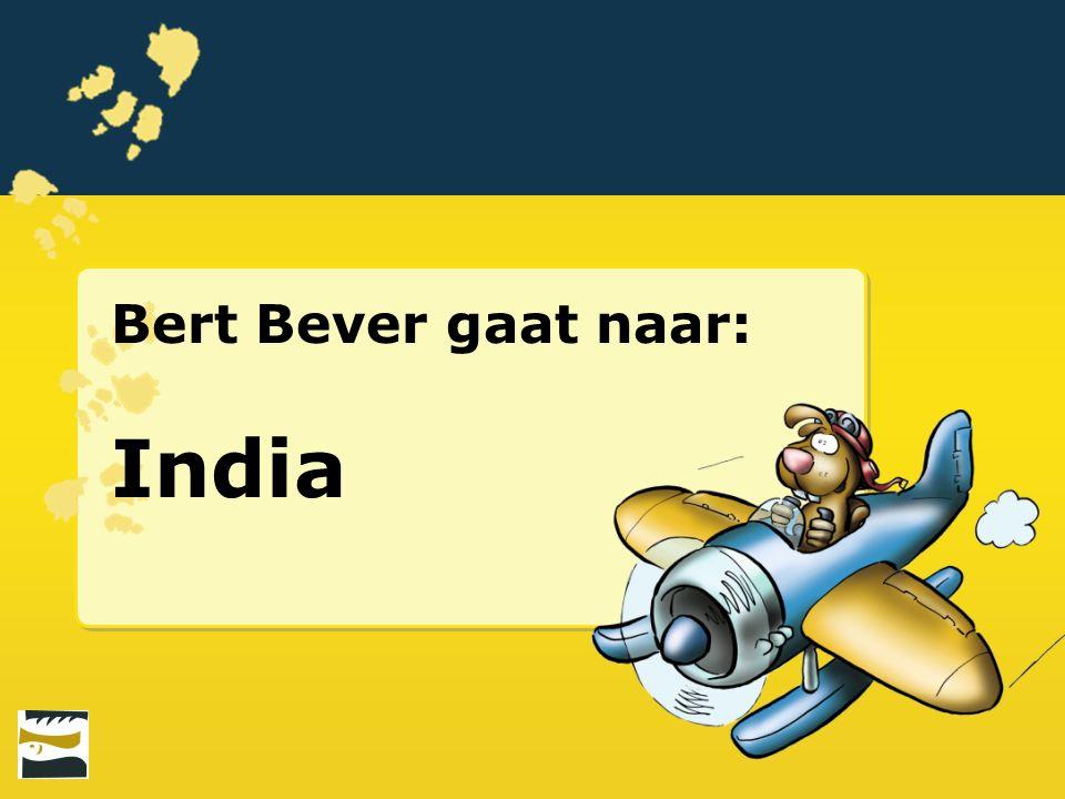 Bert Bever gaat naar: India