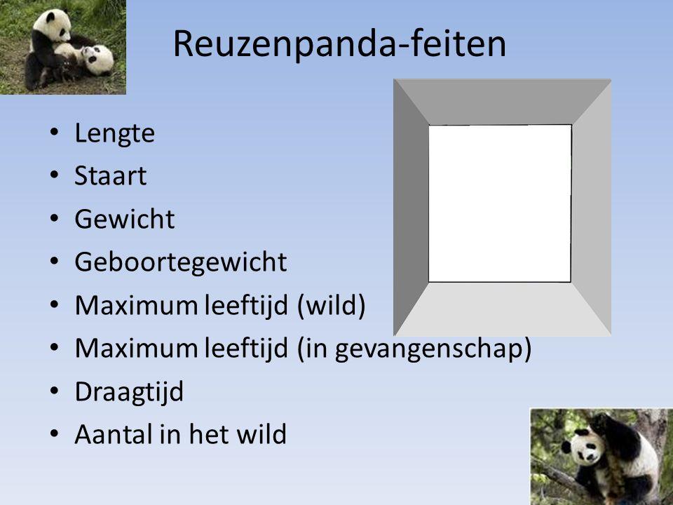Reuzenpanda-feiten Lengte Staart Gewicht Geboortegewicht Maximum leeftijd (wild) Maximum leeftijd (in gevangenschap) Draagtijd Aantal in het wild