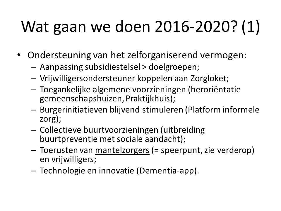 Wat gaan we doen 2016-2020? (1) Ondersteuning van het zelforganiserend vermogen: – Aanpassing subsidiestelsel > doelgroepen; – Vrijwilligersondersteun