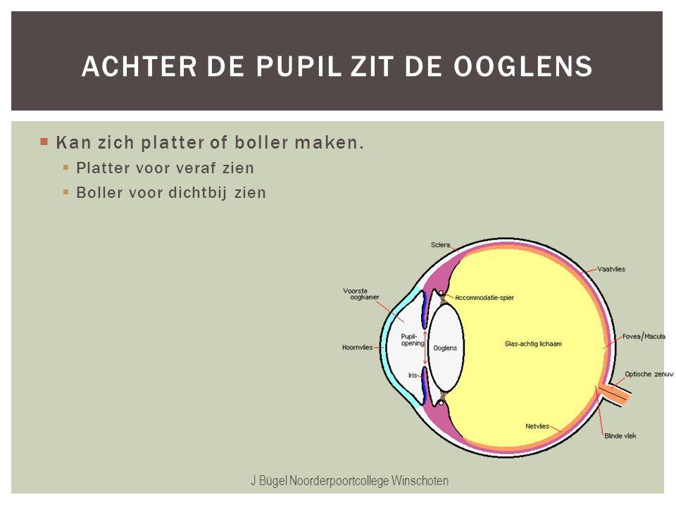  Kan zich platter of boller maken.  Platter voor veraf zien  Boller voor dichtbij zien J Bügel Noorderpoortcollege Winschoten ACHTER DE PUPIL ZIT D