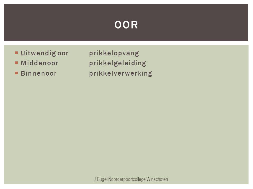  Uitwendig oorprikkelopvang  Middenoorprikkelgeleiding  Binnenoorprikkelverwerking J Bügel Noorderpoortcollege Winschoten OOR