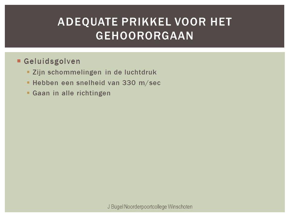  Geluidsgolven  Zijn schommelingen in de luchtdruk  Hebben een snelheid van 330 m/sec  Gaan in alle richtingen J Bügel Noorderpoortcollege Winscho