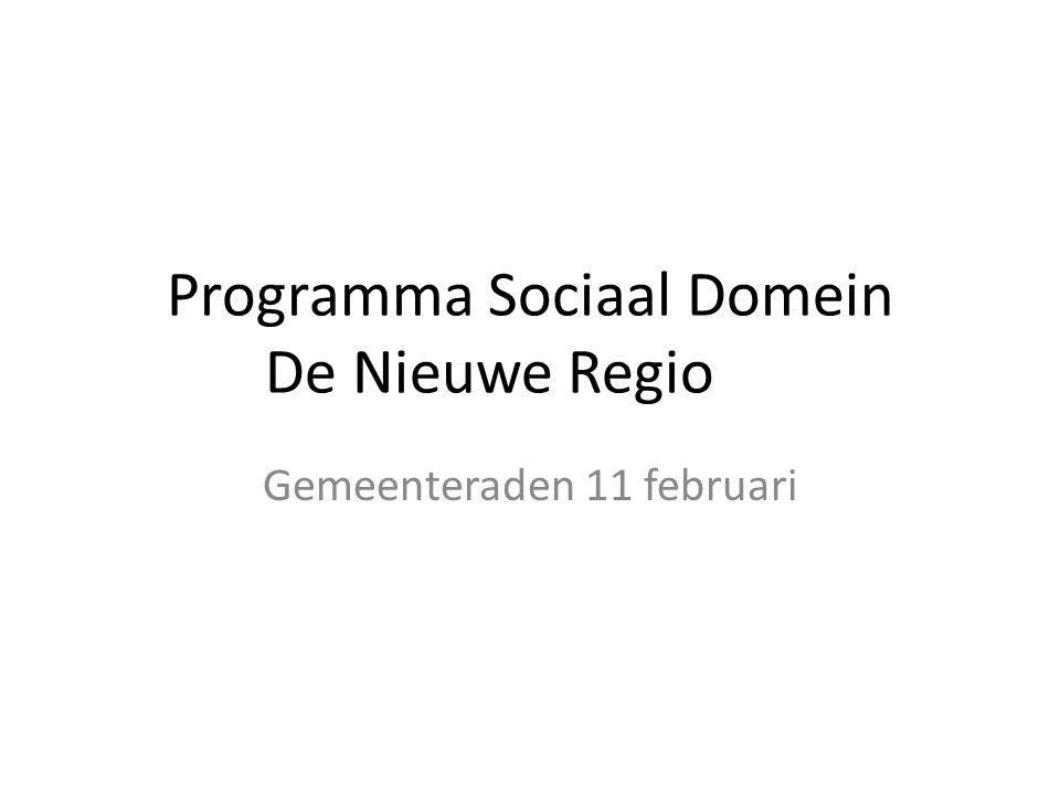 Programma Sociaal Domein De Nieuwe Regio Gemeenteraden 11 februari