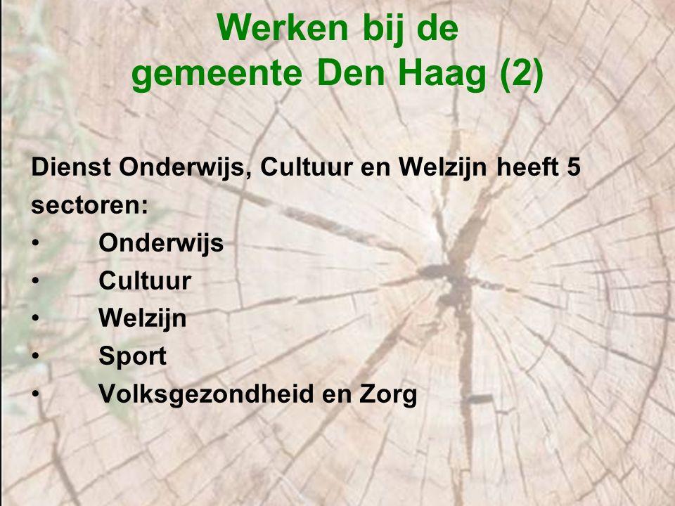 Werken bij de gemeente Den Haag (2) Dienst Onderwijs, Cultuur en Welzijn heeft 5 sectoren: Onderwijs Cultuur Welzijn Sport Volksgezondheid en Zorg
