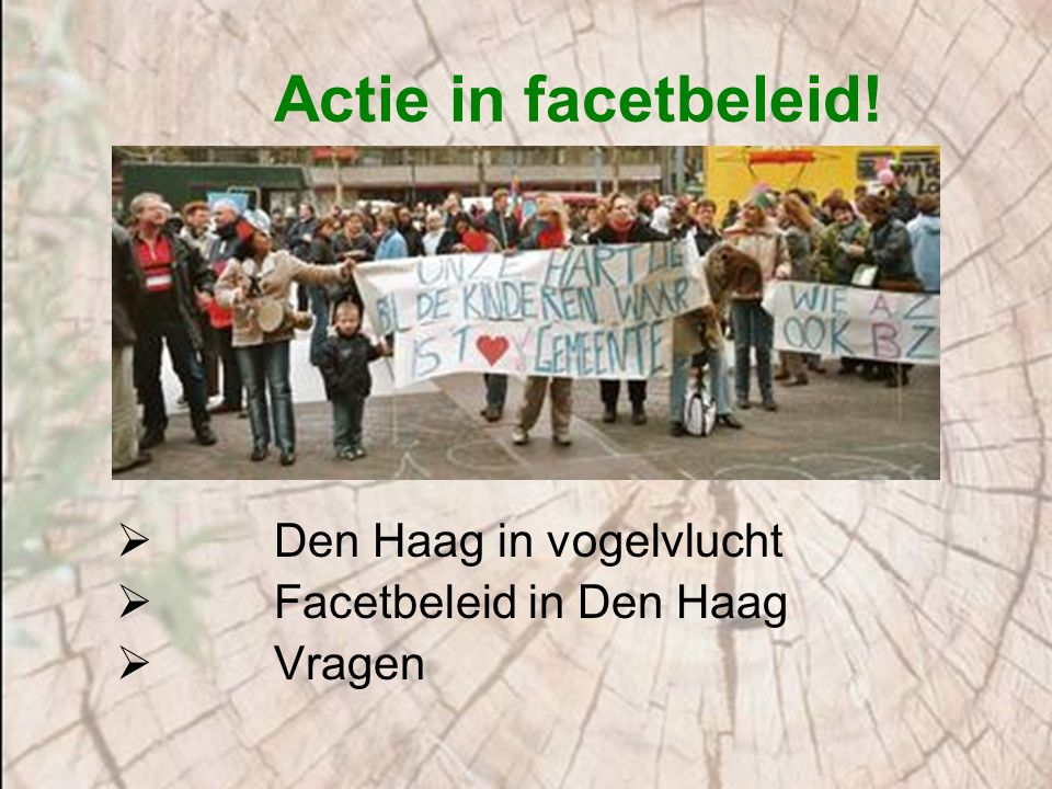 Actie in facetbeleid!  Den Haag in vogelvlucht  Facetbeleid in Den Haag  Vragen