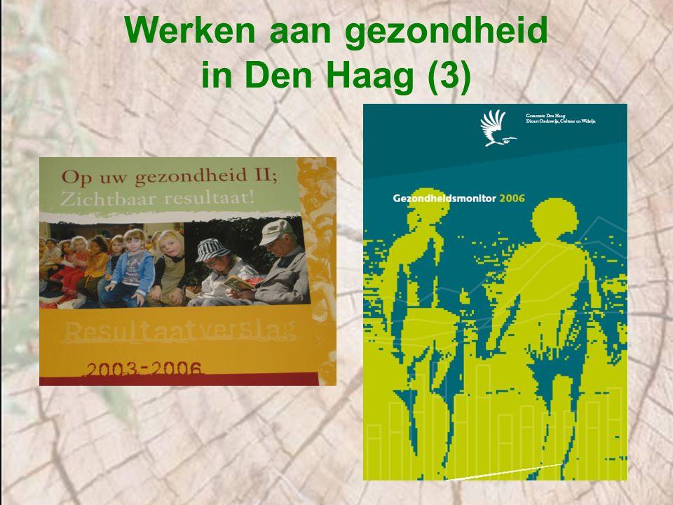 Werken bij de gemeente Den Haag (1) Gemeente Den Haag heeft 5 kerndiensten: Bestuursdienst Dienst Stedelijke Ontwikkeling Dienst Stadsbeheer Dienst Sociale Zaken en Werkgelegen- heidsprojecten Dienst Onderwijs, Cultuur en Welzijn