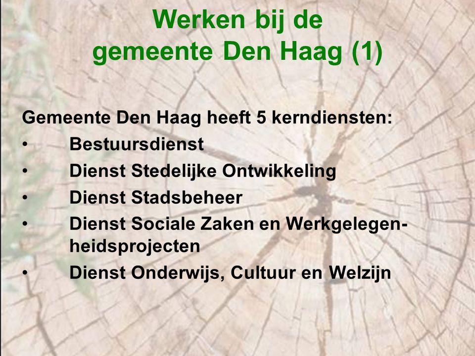 Werken bij de gemeente Den Haag (1) Gemeente Den Haag heeft 5 kerndiensten: Bestuursdienst Dienst Stedelijke Ontwikkeling Dienst Stadsbeheer Dienst So