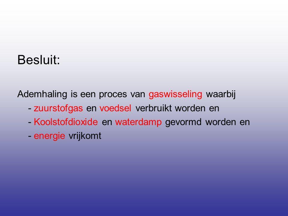 Besluit: Ademhaling is een proces van gaswisseling waarbij - zuurstofgas en voedsel verbruikt worden en - Koolstofdioxide en waterdamp gevormd worden