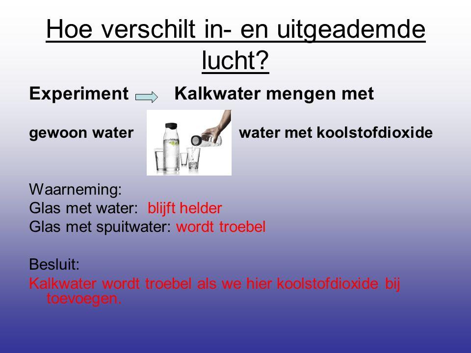 Hoe verschilt in- en uitgeademde lucht? Experiment Kalkwater mengen met gewoon water water met koolstofdioxide Waarneming: Glas met water: blijft held