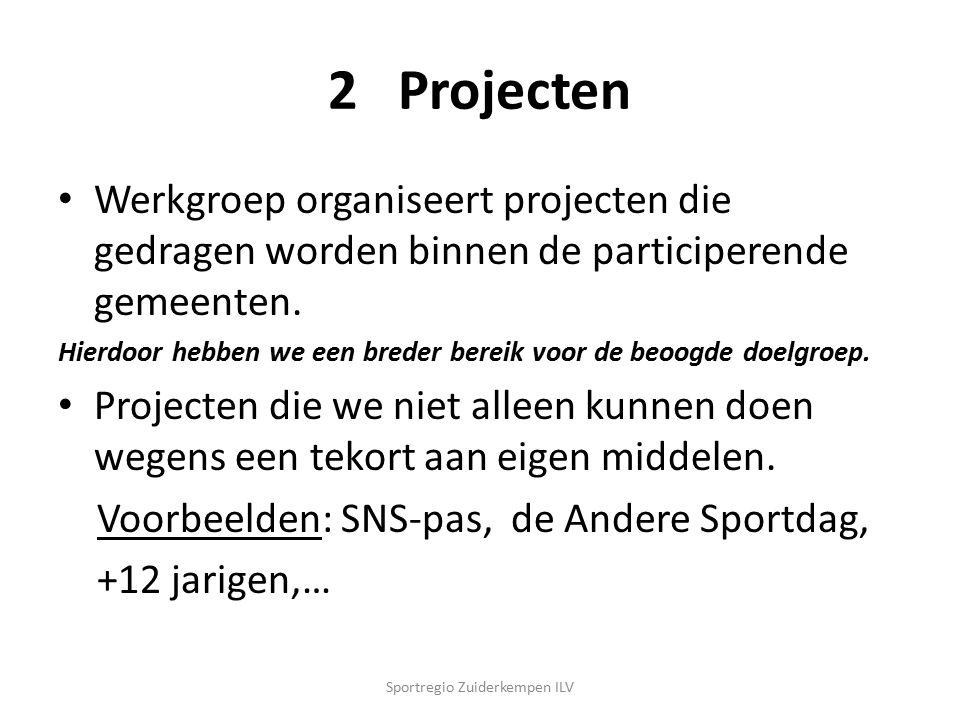 2 Projecten Werkgroep organiseert projecten die gedragen worden binnen de participerende gemeenten.