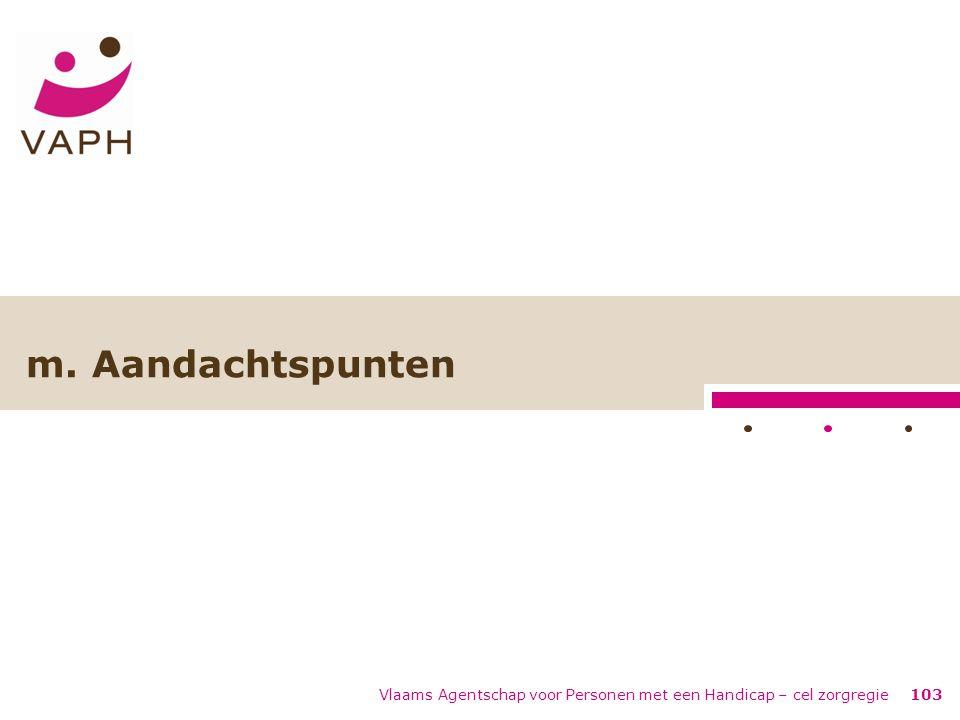 Vlaams Agentschap voor Personen met een Handicap – cel zorgregie103 m. Aandachtspunten