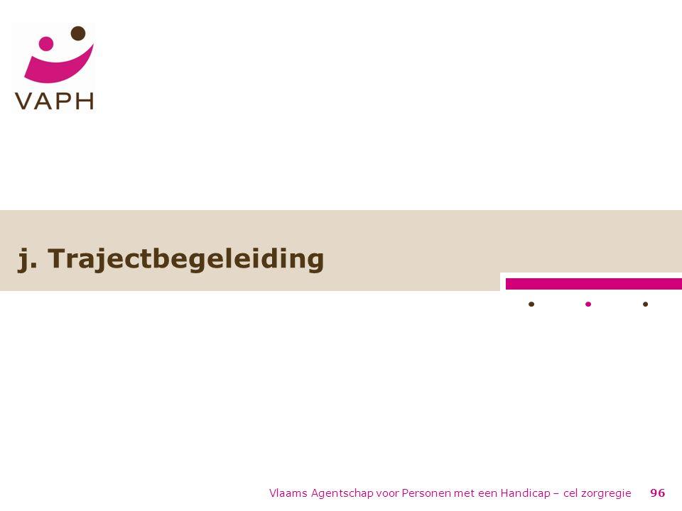 Vlaams Agentschap voor Personen met een Handicap – cel zorgregie96 j. Trajectbegeleiding