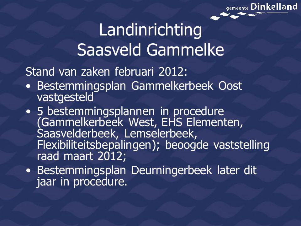 Landinrichting Saasveld Gammelke Stand van zaken februari 2012: Bestemmingsplan Gammelkerbeek Oost vastgesteld 5 bestemmingsplannen in procedure (Gamm