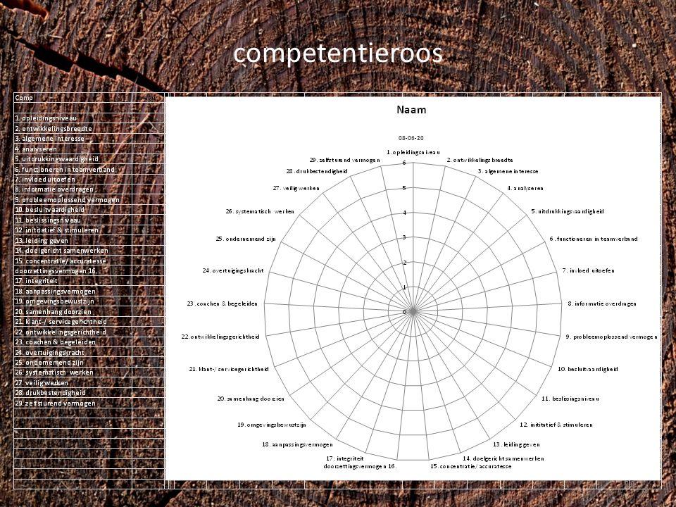 competentieroos 11