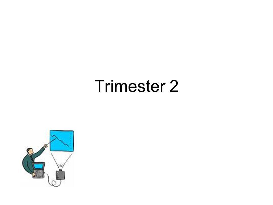Trimester 2