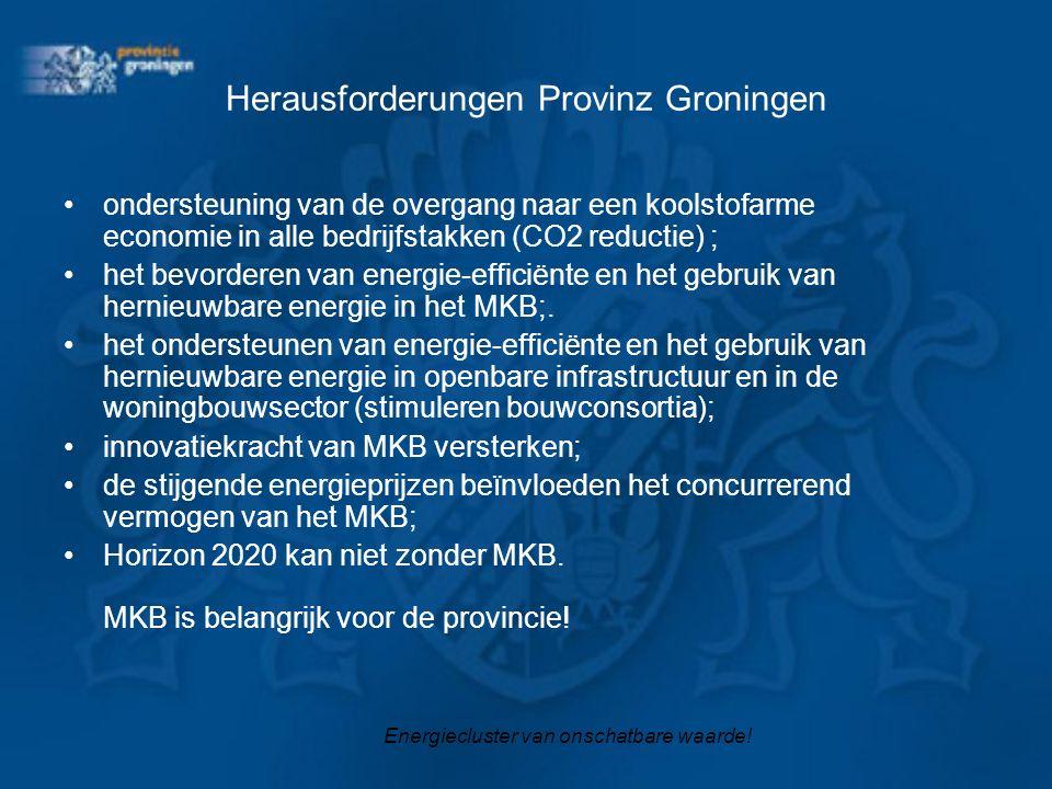 Herausforderungen Provinz Groningen ondersteuning van de overgang naar een koolstofarme economie in alle bedrijfstakken (CO2 reductie) ; het bevordere