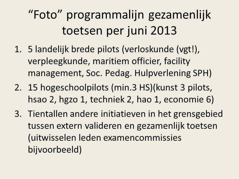 Foto programmalijn gezamenlijk toetsen per juni 2013 1.5 landelijk brede pilots (verloskunde (vgt!), verpleegkunde, maritiem officier, facility management, Soc.