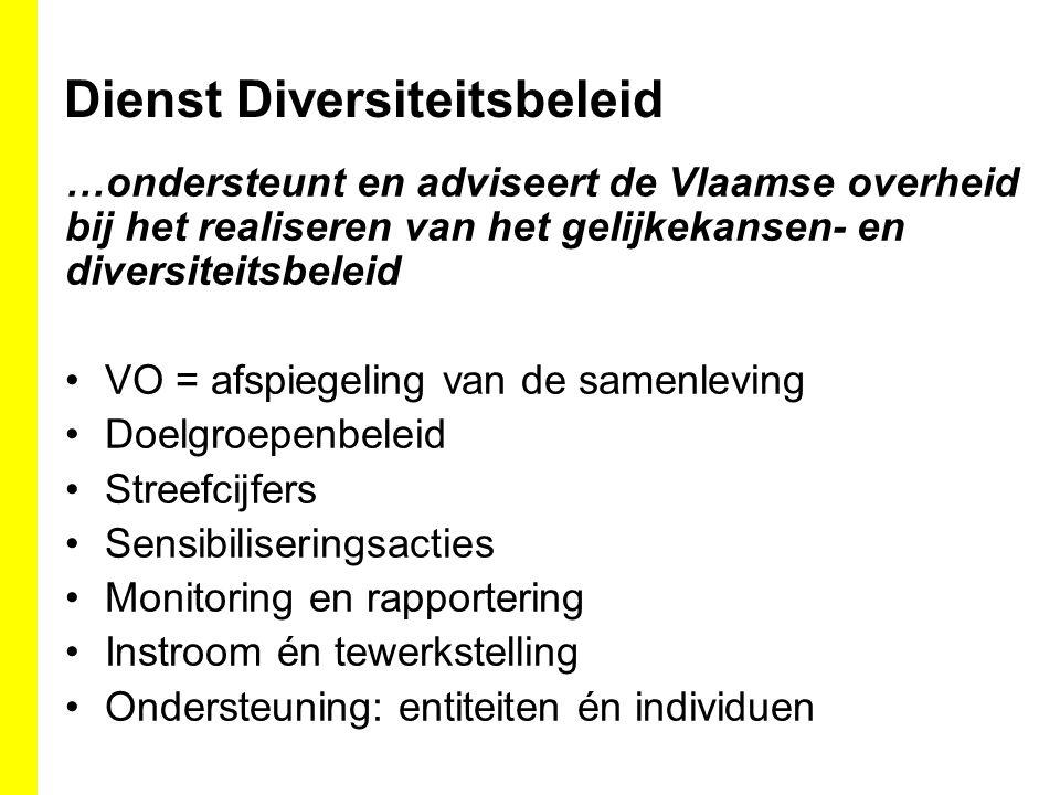 Dienst Diversiteitsbeleid …ondersteunt en adviseert de Vlaamse overheid bij het realiseren van het gelijkekansen- en diversiteitsbeleid VO = afspiegeling van de samenleving Doelgroepenbeleid Streefcijfers Sensibiliseringsacties Monitoring en rapportering Instroom én tewerkstelling Ondersteuning: entiteiten én individuen