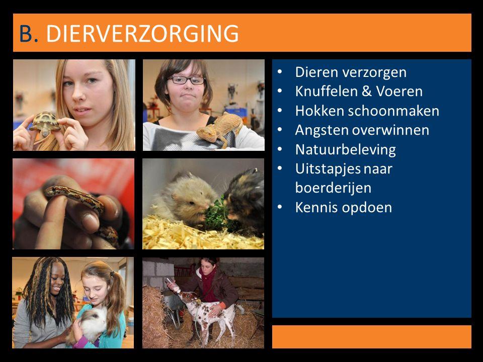 B. DIERVERZORGING Dieren verzorgen Knuffelen & Voeren Hokken schoonmaken Angsten overwinnen Natuurbeleving Uitstapjes naar boerderijen Kennis opdoen