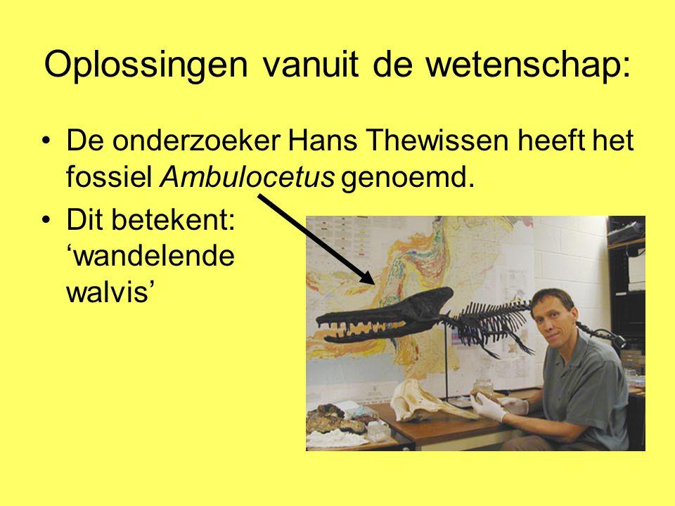 Oplossingen vanuit de wetenschap: De onderzoeker Hans Thewissen heeft het fossiel Ambulocetus genoemd. Dit betekent: 'wandelende walvis'