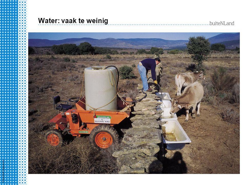 Water: vaak te weinig