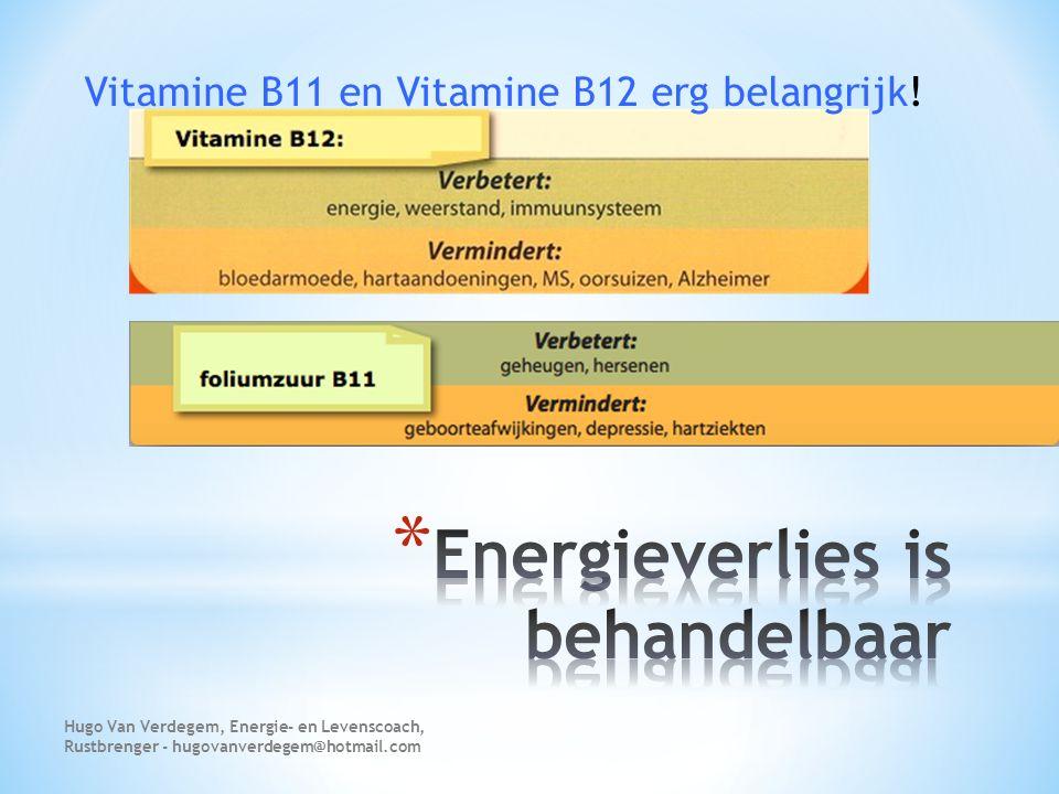 Vitamine B11 en Vitamine B12 erg belangrijk! Hugo Van Verdegem, Energie- en Levenscoach, Rustbrenger - hugovanverdegem@hotmail.com