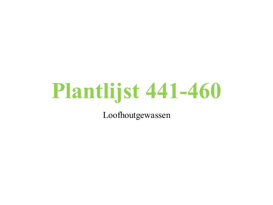 Plantlijst 441-460 Loofhoutgewassen