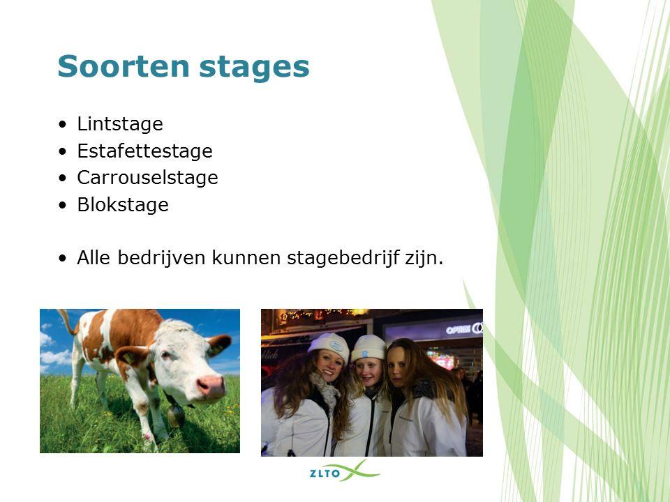 Soorten stages Lintstage Estafettestage Carrouselstage Blokstage Alle bedrijven kunnen stagebedrijf zijn.